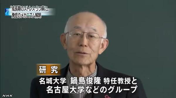 Professeur Nagoya