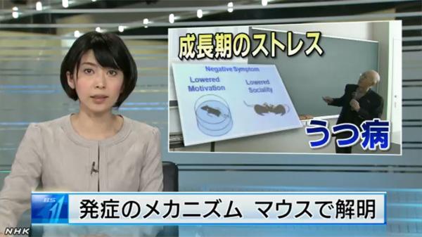 NHK anti-depression news