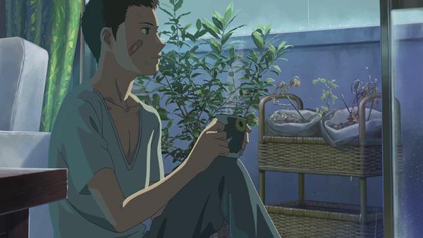 le bluray du film animation kotonoha no niwa dat au japon. Black Bedroom Furniture Sets. Home Design Ideas