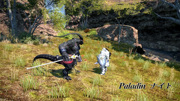 FF14 Paladin
