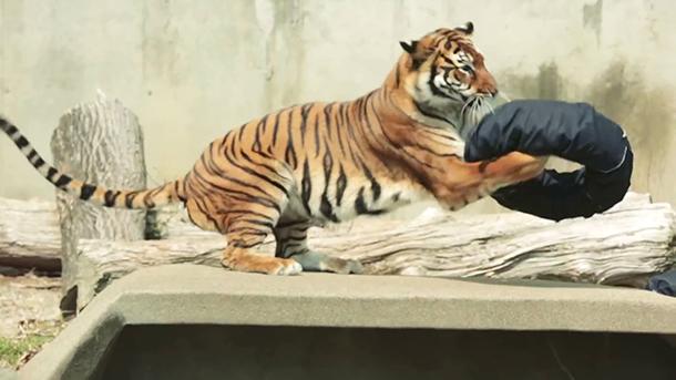 Jeans-design-by-tiger-japan-001