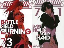 Bleach-tomes-manga-777