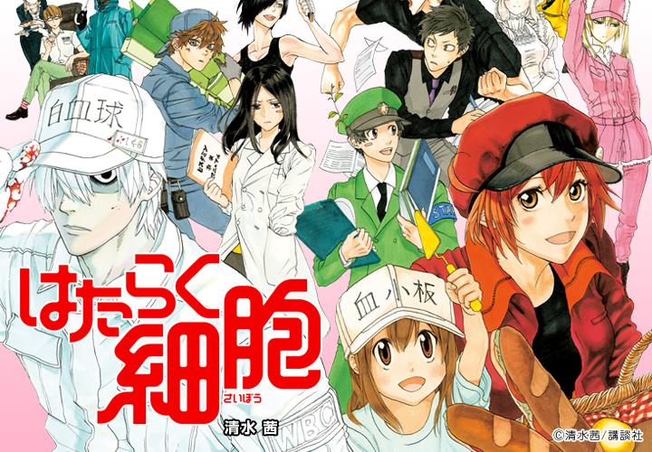Hataraku_Saibou_manga_illustration_003