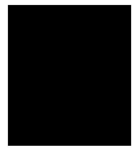 Niveau 1 – Curieux